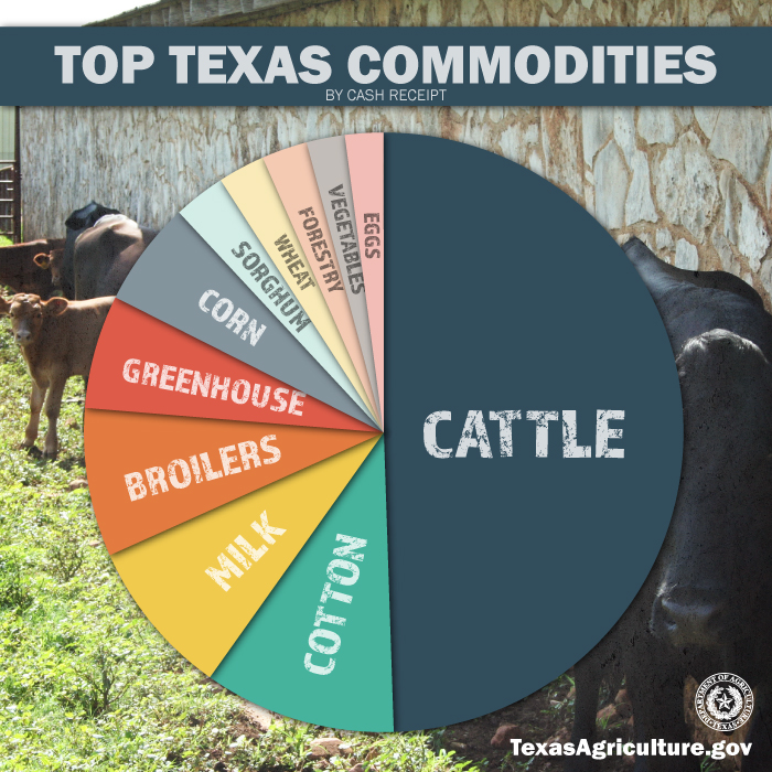 Texas agricultural economist calls out The Heritage ... |Texas Agriculture